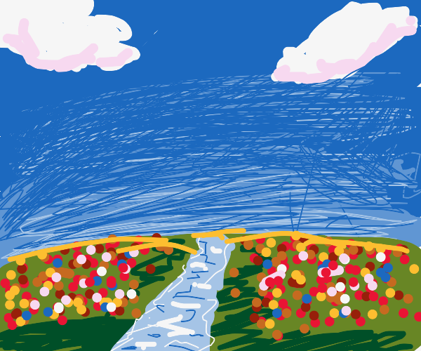 Field of flowers with river running through