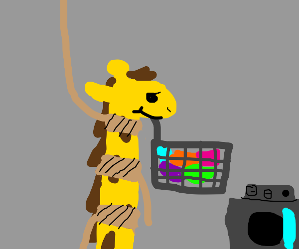 Giraffe takes clean clothes while being hang.