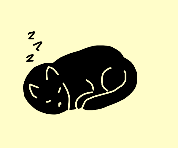 Adorable kitty is curled up, sleeping.