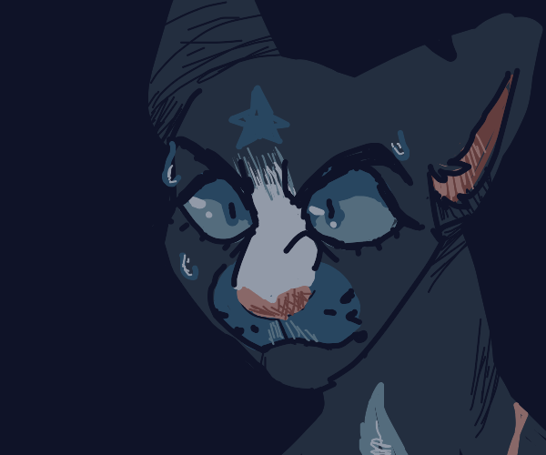 Bluestar from Warrior Cats is scared