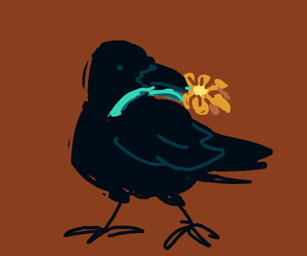 Crow and a flower