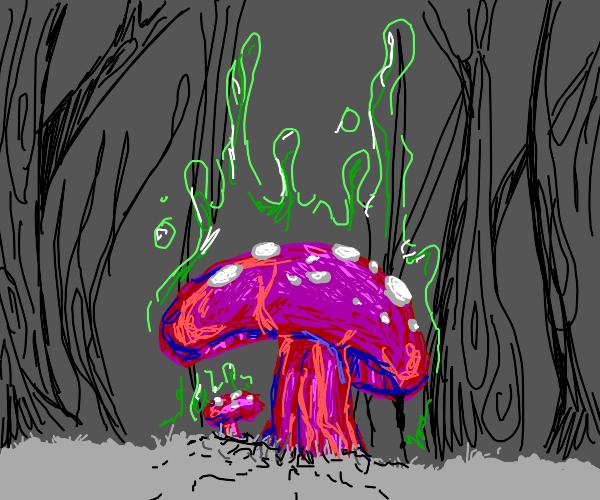 Radioactive mushroom