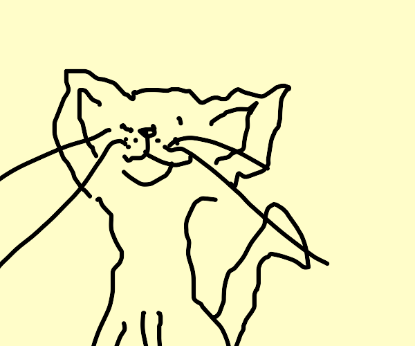 Worst Possible Drawing of Cat