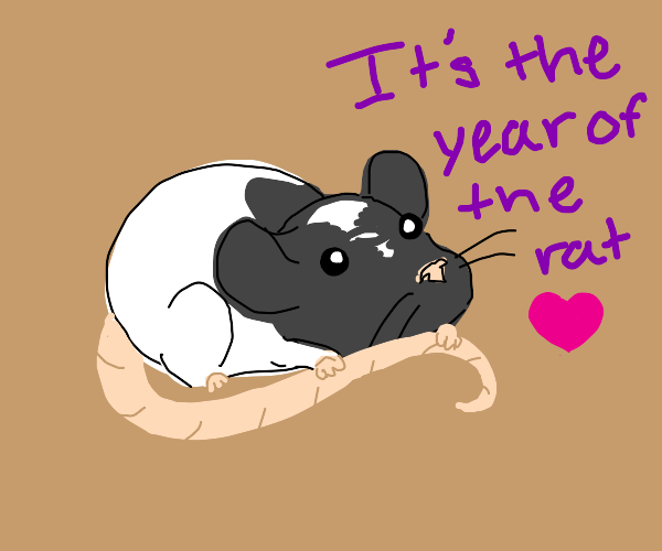 Its the year of the rat! (I love rats)
