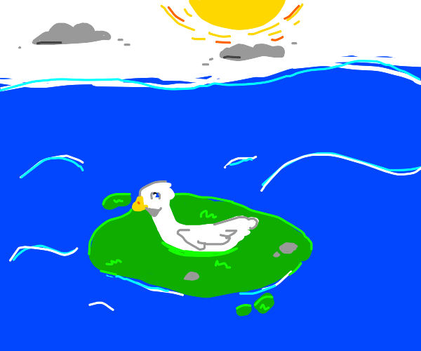 A duck on tiny island in mid of water