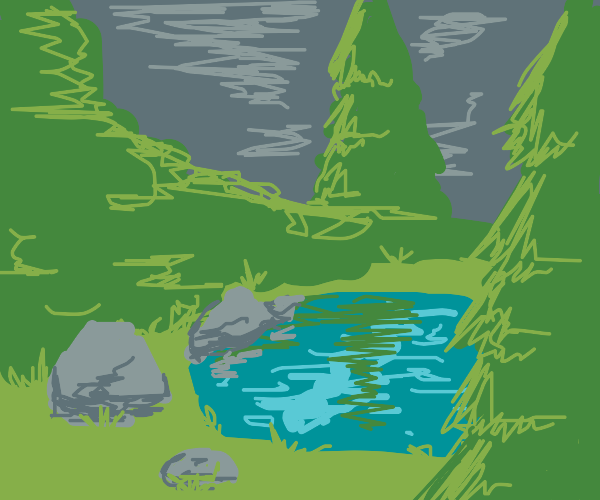 A pond in a forest