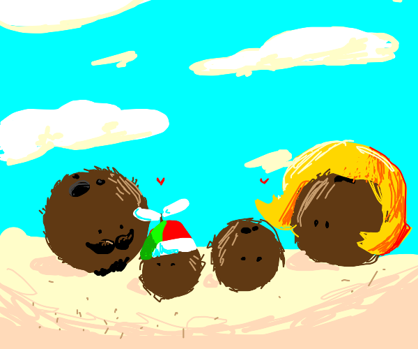 coconut family at the beach