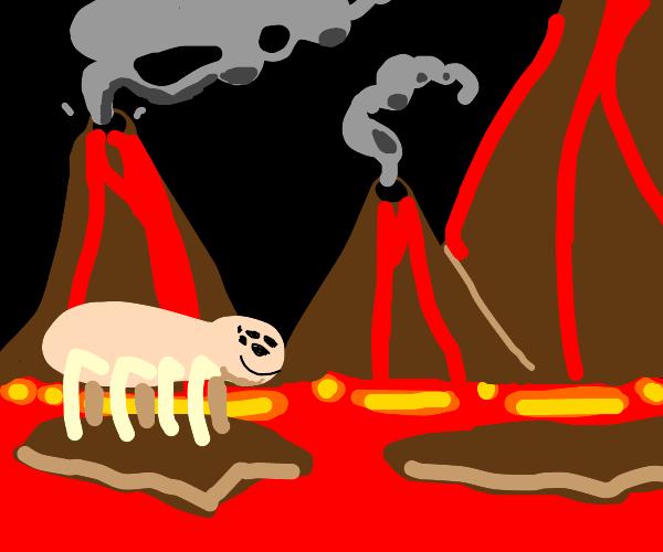 Pink fleshy spider traverses Lava