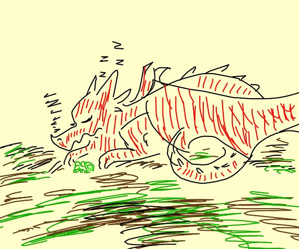 Sleeping dragon and frog