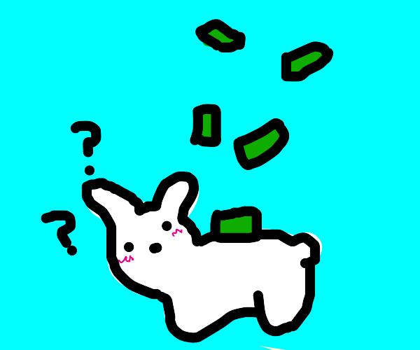 it rains money on the bunny