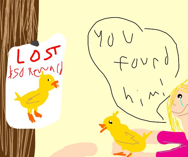 Duck is found