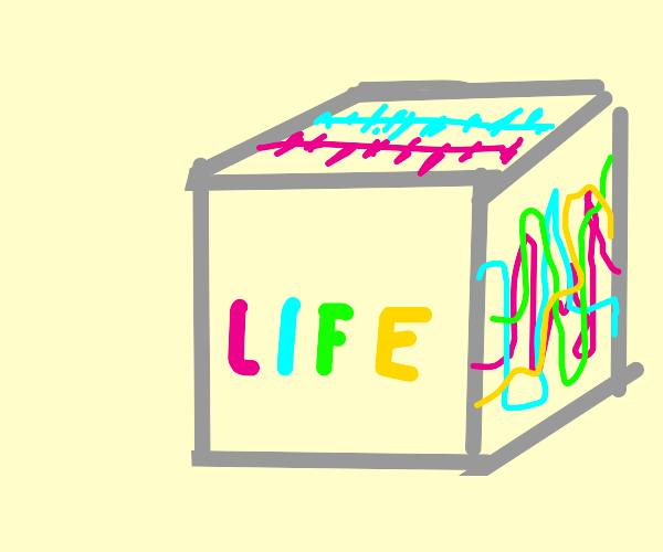 life is a box