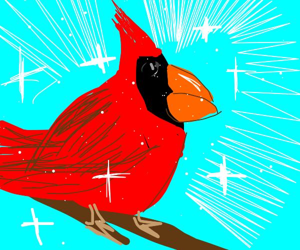 Glorious red bird