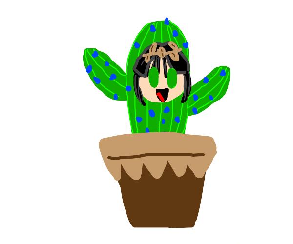 My Cactus Buddy