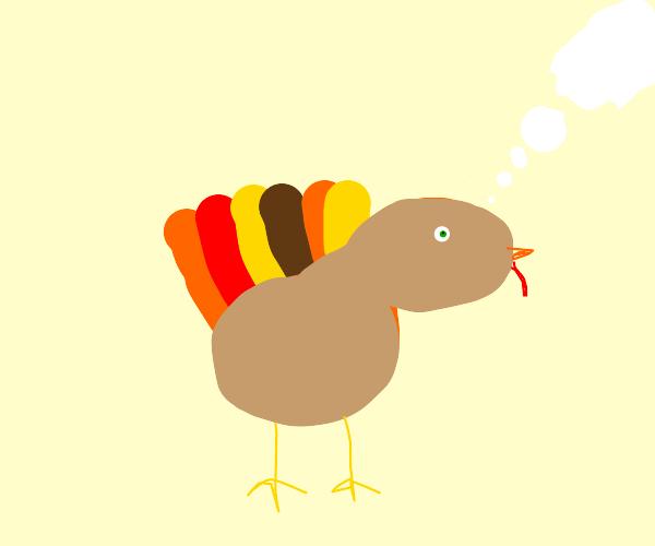 Thinking Turkey