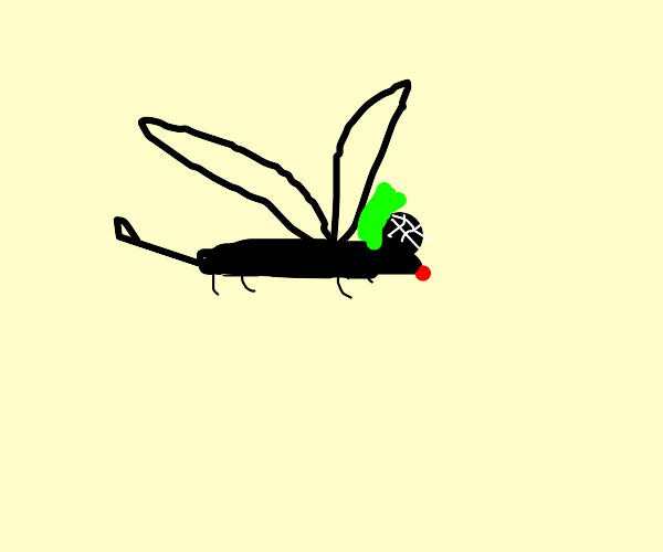 Silly Mosquito