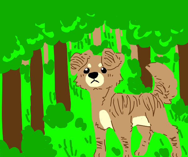 Stripy dog in the woods