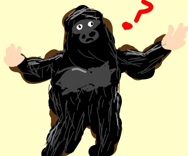 Confused person in a gorilla costume