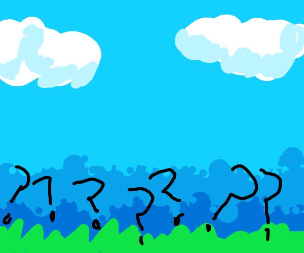 questionable grass