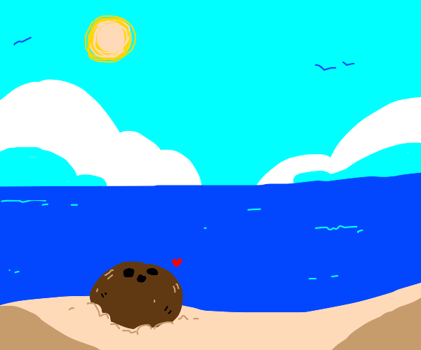 Coconut sunbathing on the beach