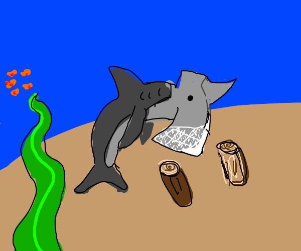 Hammerhead shark chops wood in half: HI-YA!