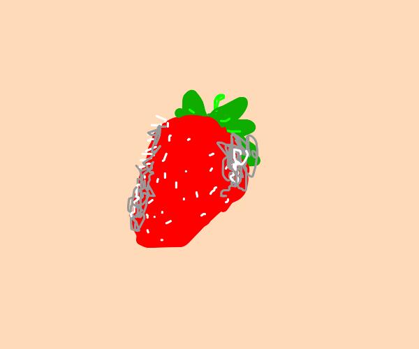 Strawberry Gone Bad