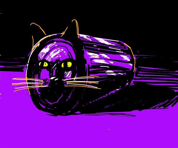 Soda can cat
