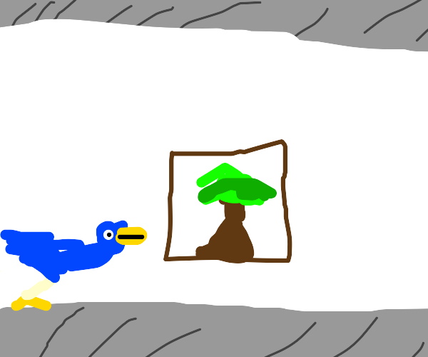 art gallery for birds
