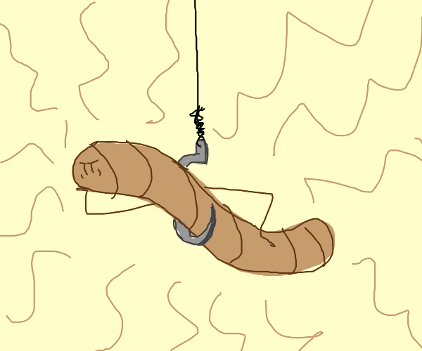 Worm on a string rethinking life
