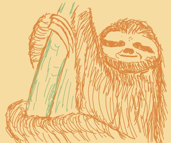 Sloth :)