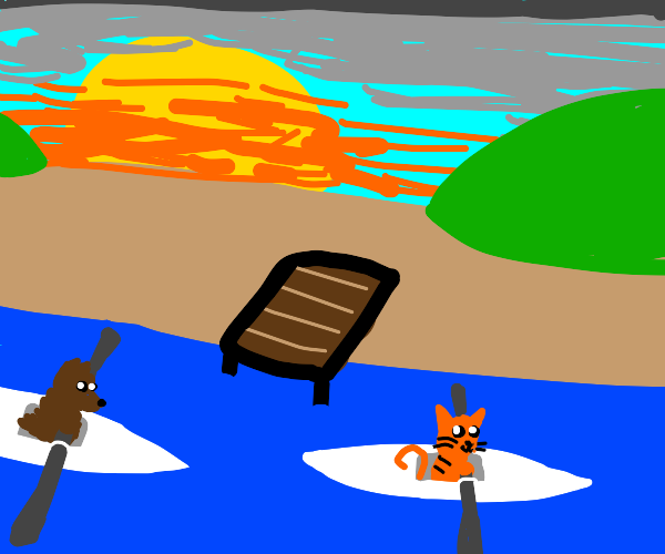 Cat and dog kayak race by dock at sunset