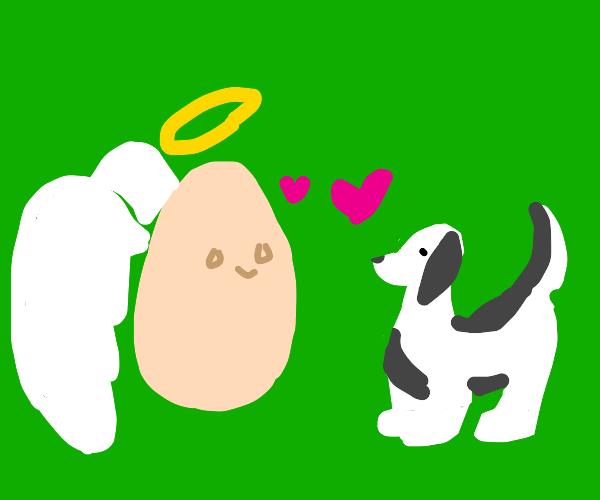 Angel egg isbest friend with b&w shepherd dog