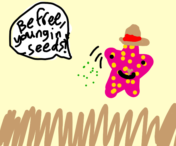 Starfish Planting