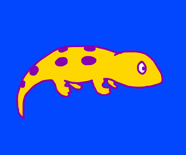 purple outlined salamander