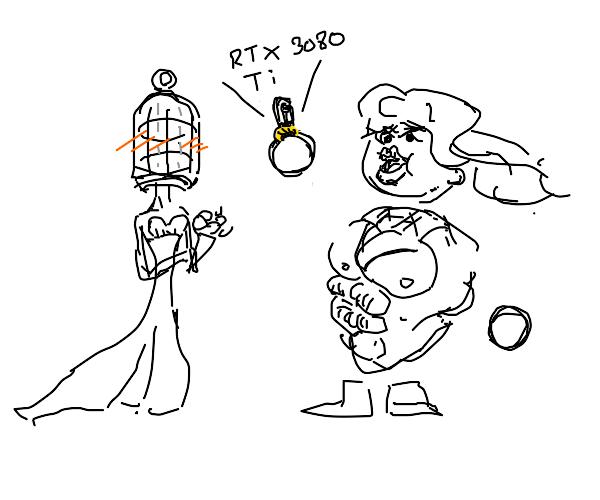 A computer and a birdcage wedding