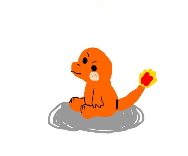 A fire lizard