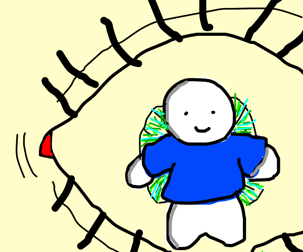 A blue-shirted boy in the middle of an eye.