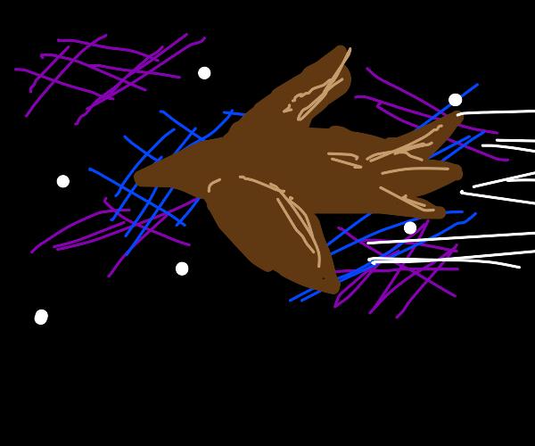 Hawk soars through night sky