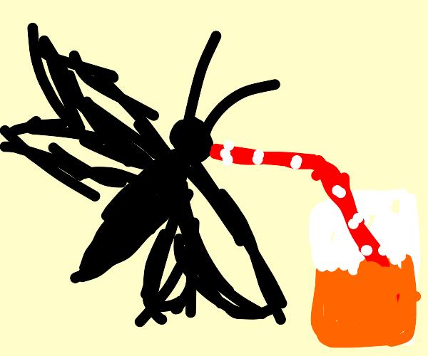 Dragonfly using a straw to drink orange soda