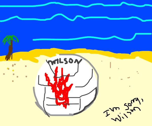 Wilson on the beach