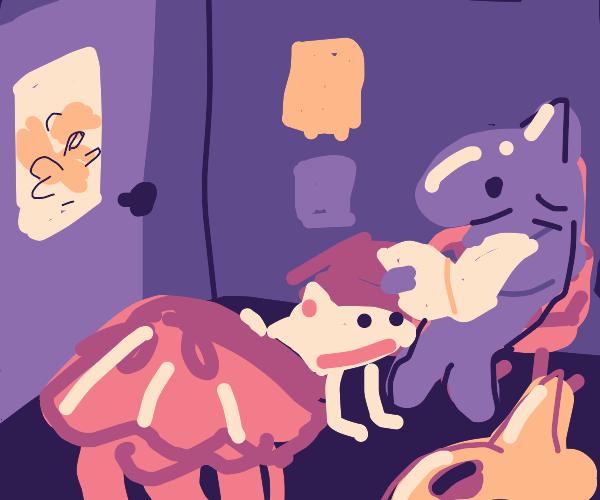Sea animals at waiting room