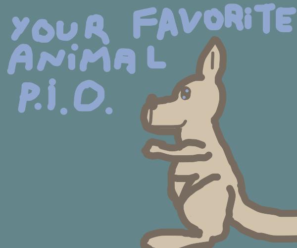 Draw your favorite animal (P.IO)