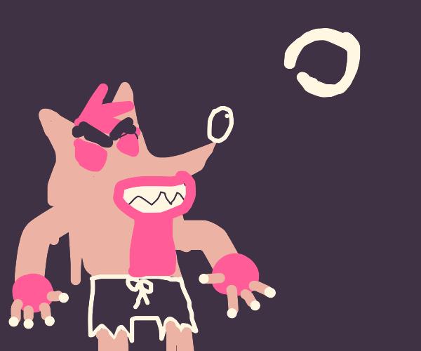 Crash Bandicoot's werewolf form