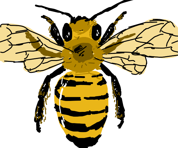 Physically accurate bee