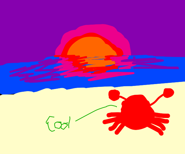 crab looking at the sunset