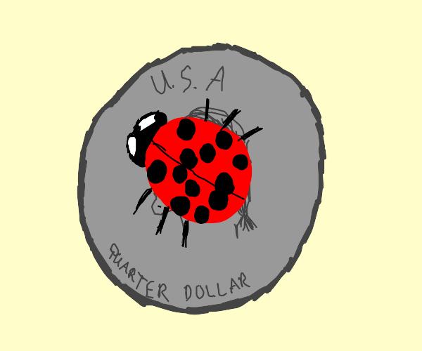 ladybug on a quarter