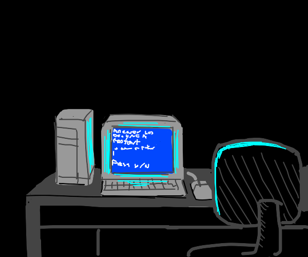 A pc crashed (that blue screen thing)