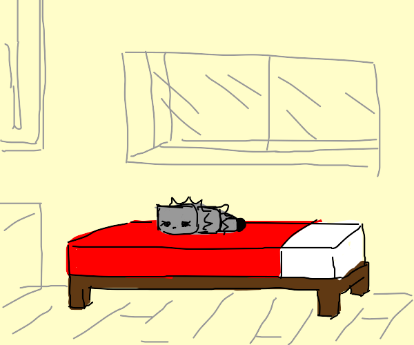 girl silverfish on bed