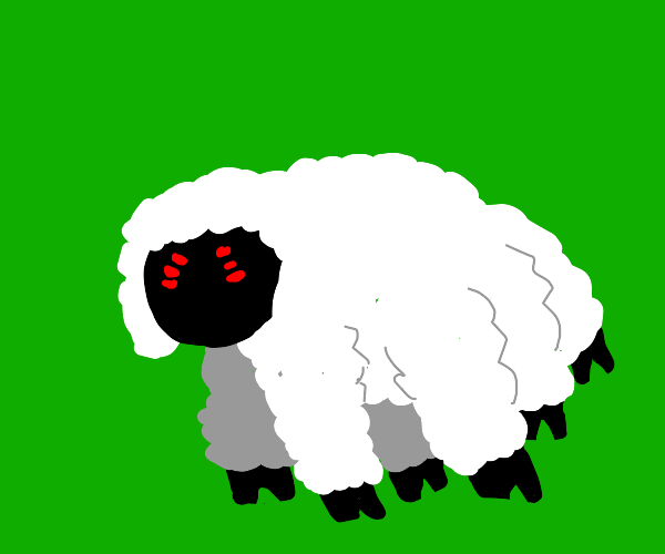 Spider sheep