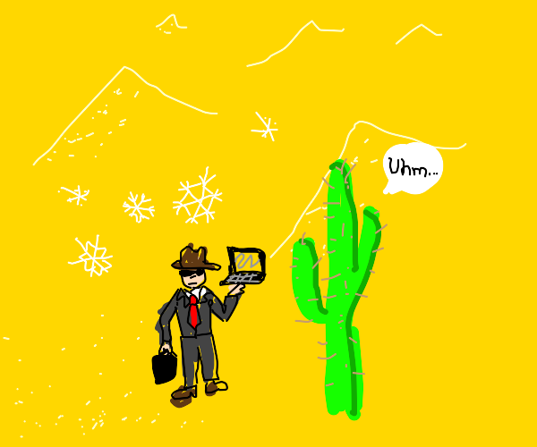 man in desert with laptop, a cactus and snow!